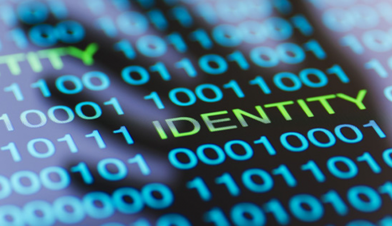 Identity fraud vs identity theft